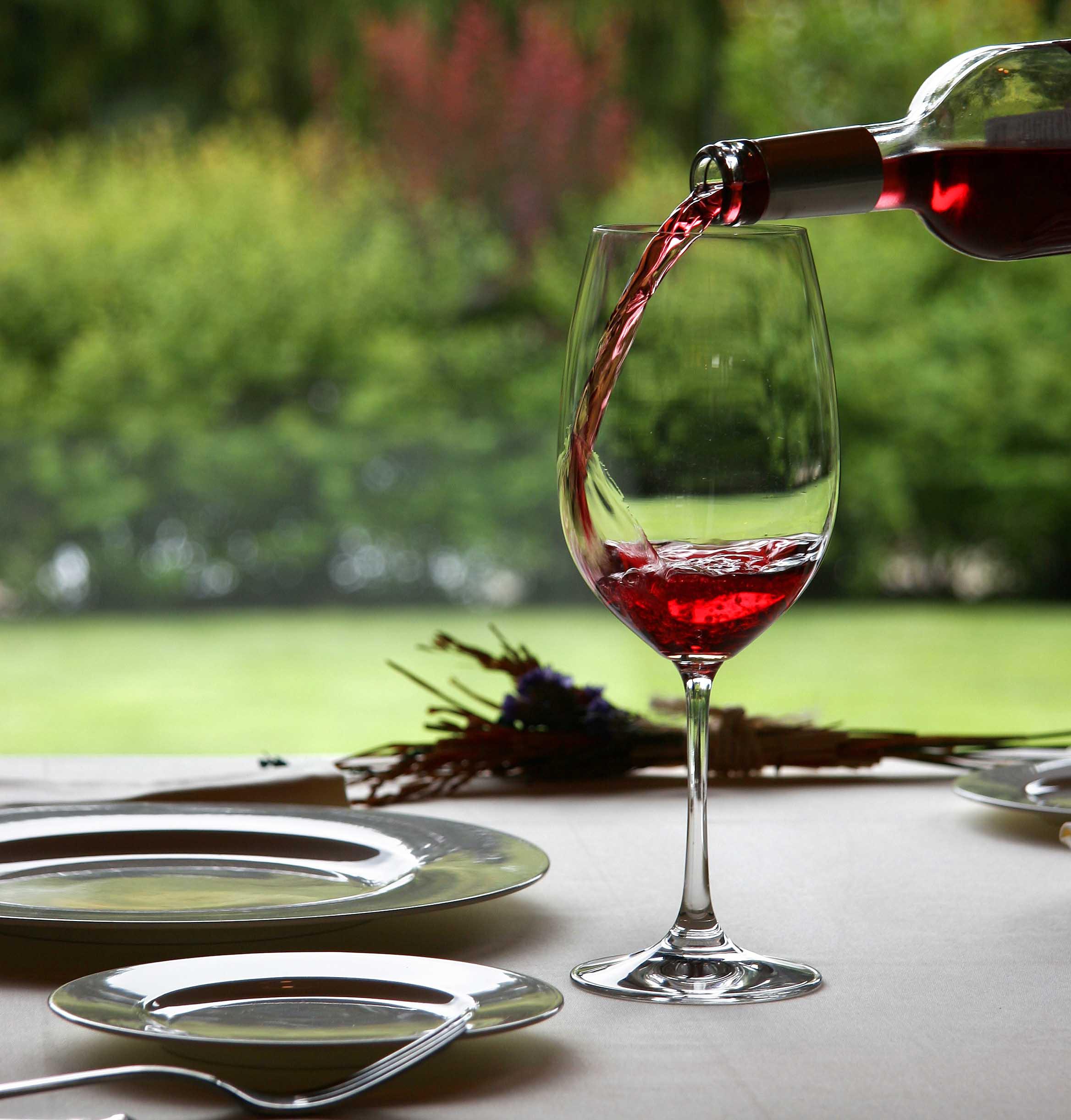 ¿Cómo utilizar los cinco sentidos en la venta y cata de vinos? Símbolo Ingenio Creativo