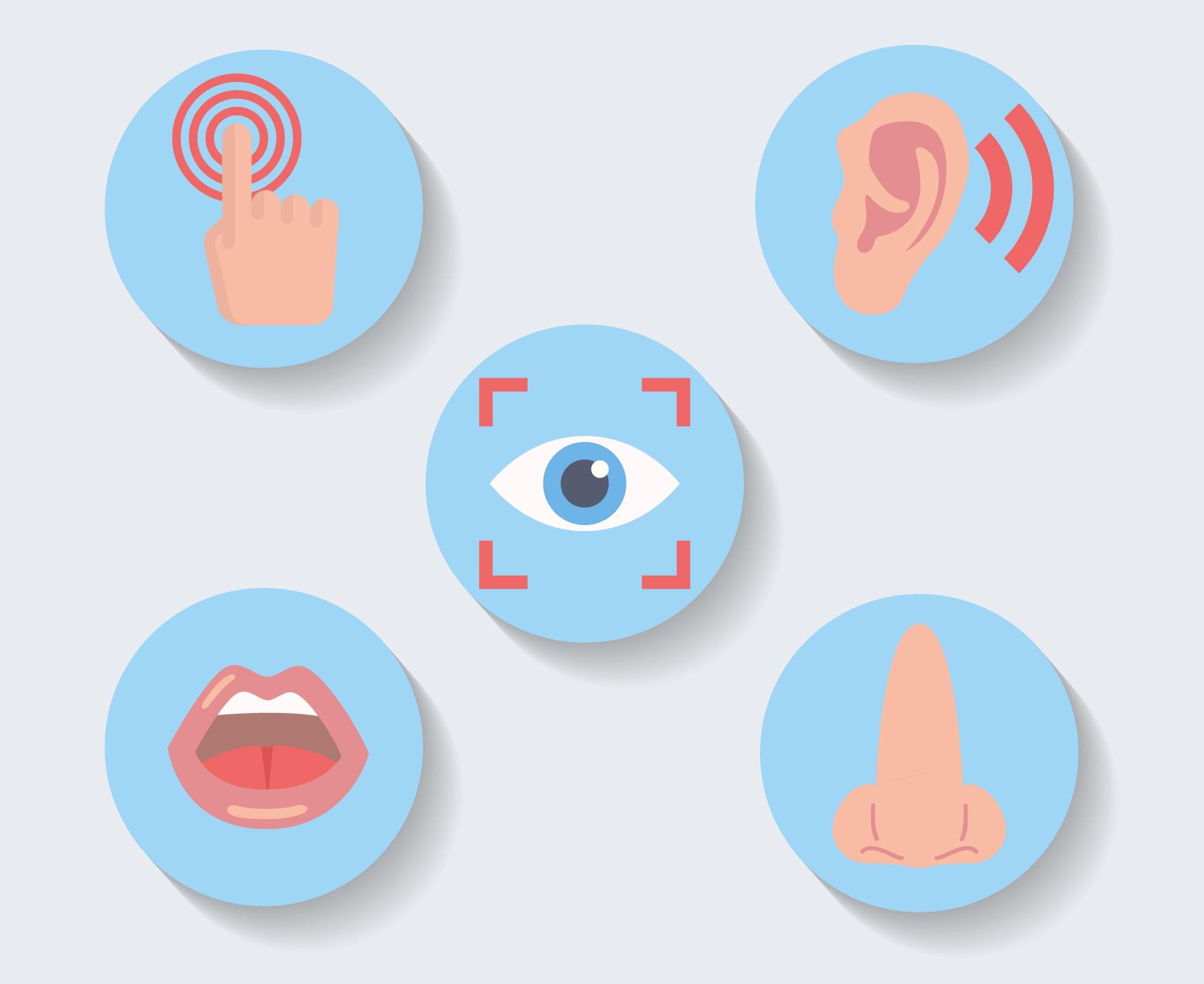 El marketing sensorial: La creatividad de las marcas para venderte mejor
